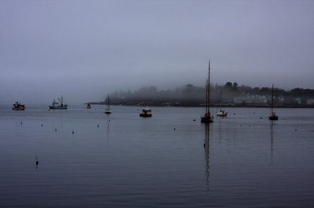 boats-in-fogy-bay-color