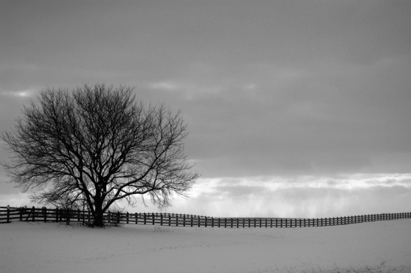 winter-barn-010-b&w